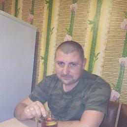 Vladimir, 39 лет, Снежинск