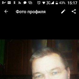 Владимир, 40 лет, Боровичи