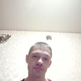 Александр, 38 лет, Электрогорск