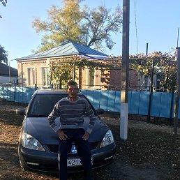 Александр, 49 лет, Тихорецк