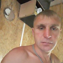 Фото Александр, Москва, 39 лет - добавлено 4 ноября 2020