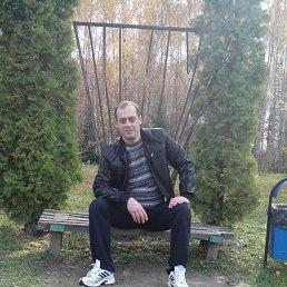 илья, 41 год, Дрезна