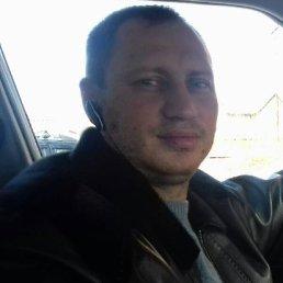 Николай, Нижний Новгород, 42 года