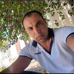 Адам, 29 лет, Краснодар