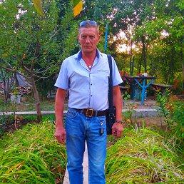 Андрей, 53 года, Белгород