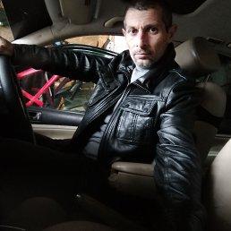 Сергей, 46 лет, Северская