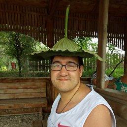 антон, 28 лет, Омск