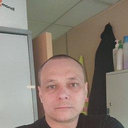 Александр, 40 лет, Чехов