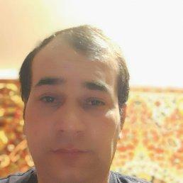 Боря, 36 лет, Жуковский