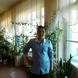 Елена, 44 года, Барнаул