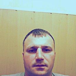 Павел, 38 лет, Саратов