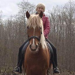 Юлия, 52 года, Петергоф