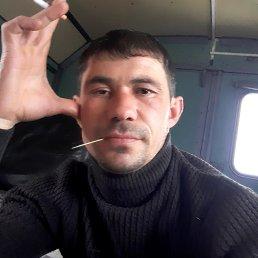 Адамс, 36 лет, Ставрополь