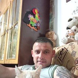 Виктор, 41 год, Аргаяш