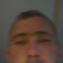 Роман, 41 год, Ставрополь