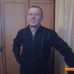 Юрий, 53 года, Балашов