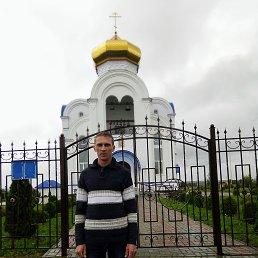 Андрей, 34 года, Брянск