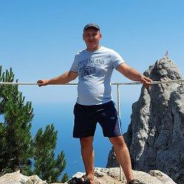 Андрей, 36 лет, Брянск