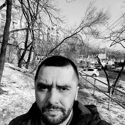 Антон, 37 лет, Владивосток