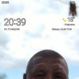 Андрей, 41 год, Белгород
