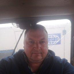 Роман, 42 года, Белгород