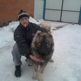 Александр, 44 года, Ядрин