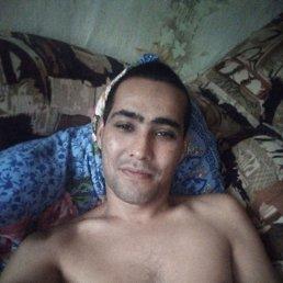 Андрей, 33 года, Белогорск