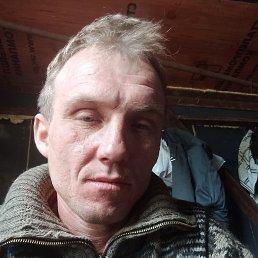Толя, 33 года, Владивосток