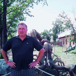 Иван, 44 года, Бреды