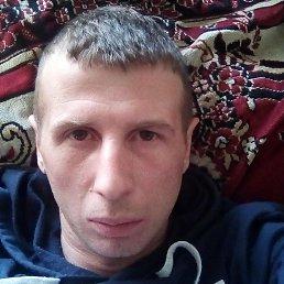 Сергей, 37 лет, Тверь