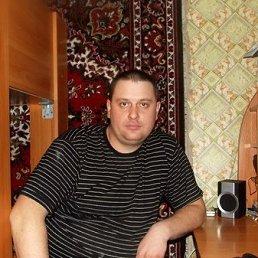 Дима, 37 лет, Курган