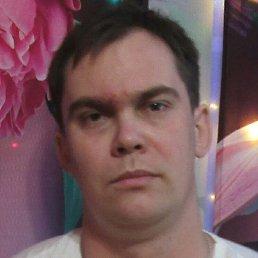 Алексей, Волгоград, 29 лет