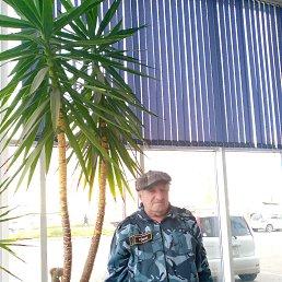 Владимир, 66 лет, Иркутск