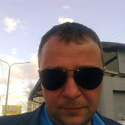 Юра, 37 лет, Икша