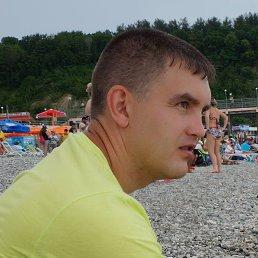 Николай, 40 лет, Воронеж