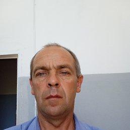 Алексей, 45 лет, Саратов