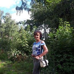Елена, 55 лет, Раменское