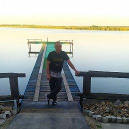 Николай, 44 года, Новочеркасск