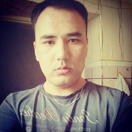 Шер, 29 лет, Санкт-Петербург