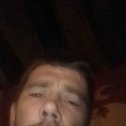 Михаил, 37 лет, Воронеж