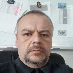 Евгений, 44 года, Тула