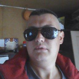Артём, Барнаул, 29 лет