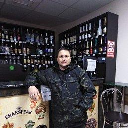 Александр, 41 год, Ставрополь
