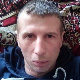 Сергей, Тверь, 37 лет