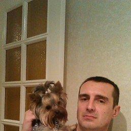 Митя., 45 лет, Волгоград