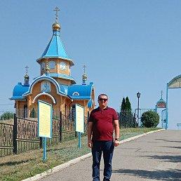 Дмитрий, Самара, 35 лет
