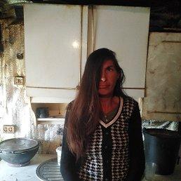 Александра, 34 года, Самара