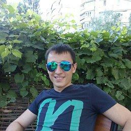 Миша, 35 лет, Бишкек