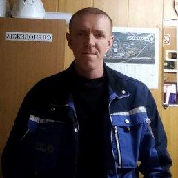 Сергей, 42 года, Омск
