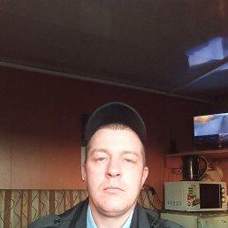 Николай, 41 год, Москва